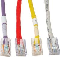 Close up image of Cat5e and Cat6 Copper Patch Cords